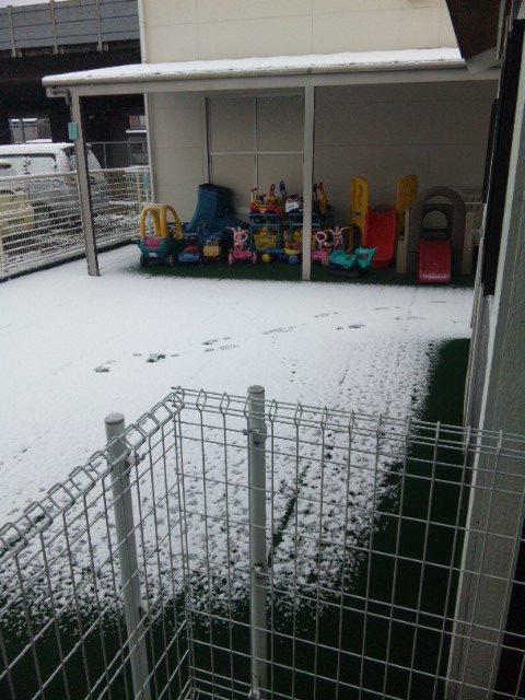 竜陽園 お庭の雪